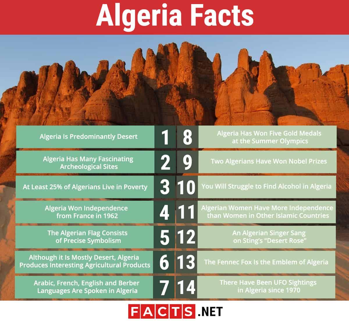 Algeria Facts infographics