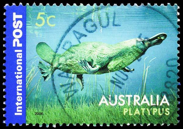 Platypus MailStamp