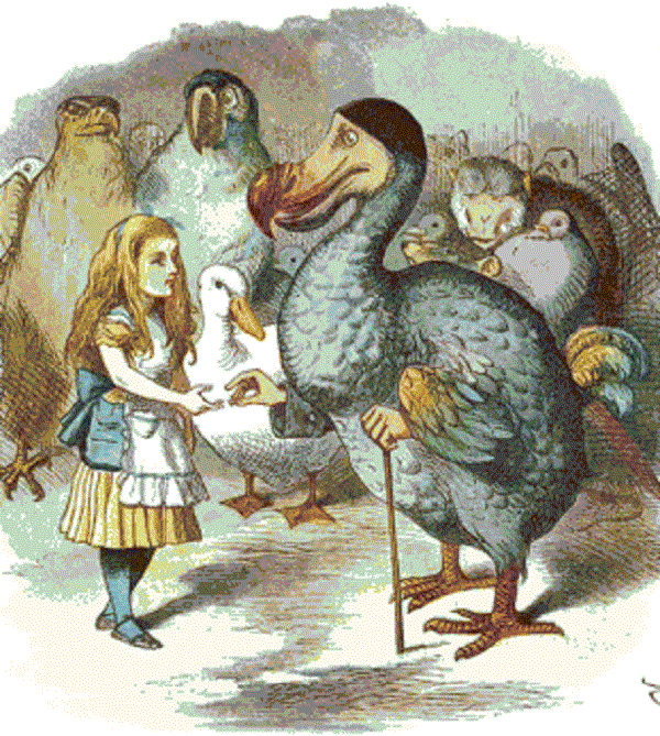 dodo bird - Alice in Wonderland