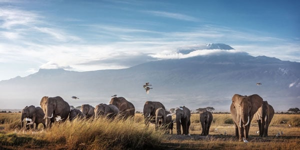 Mount Kilimanjaro Location