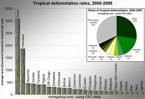 Deforestation Rate by Country
