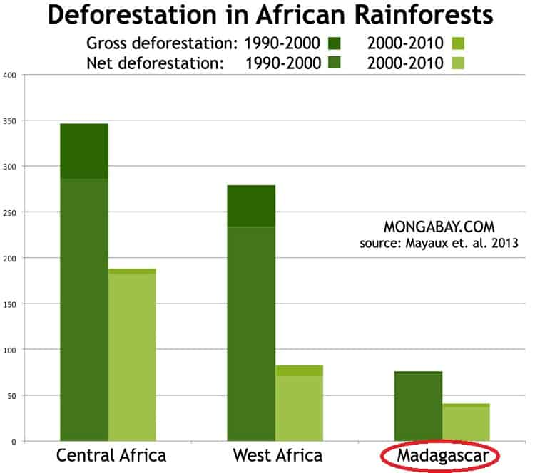 Deforestation in Madagascars Rainforests