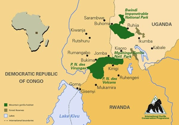 Mountain Gorillas Range Map