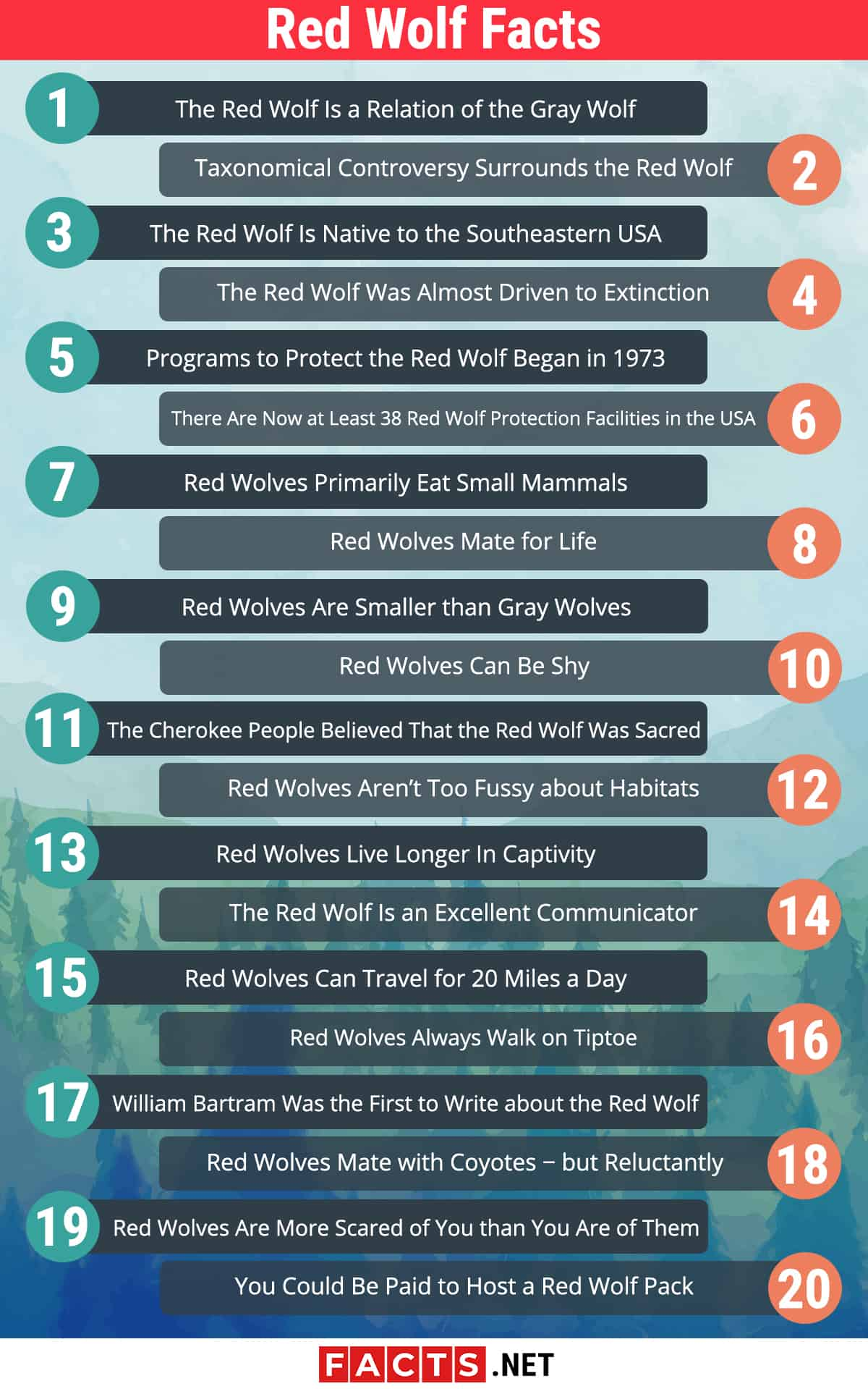 red wolf facts infographics