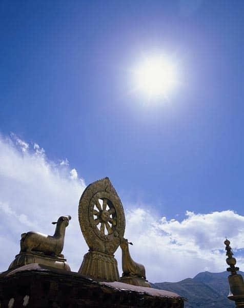 Buddhist Wheel of Dharma