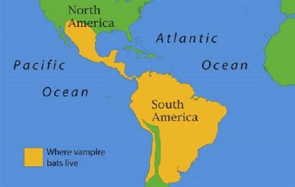 Vampire Bats Range Map