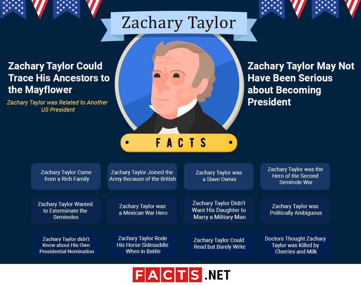 Zachary Taylor Facts Infographics