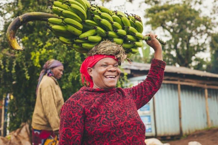 banana-facts