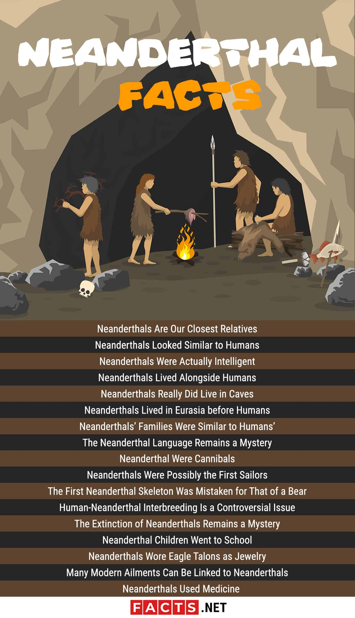 Neanderthal Facts Infographics