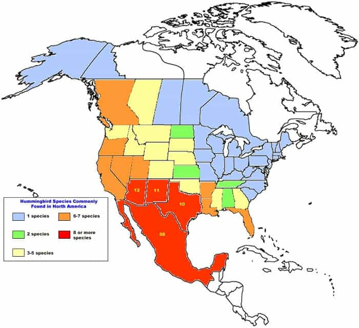 Hummingbird Species Map