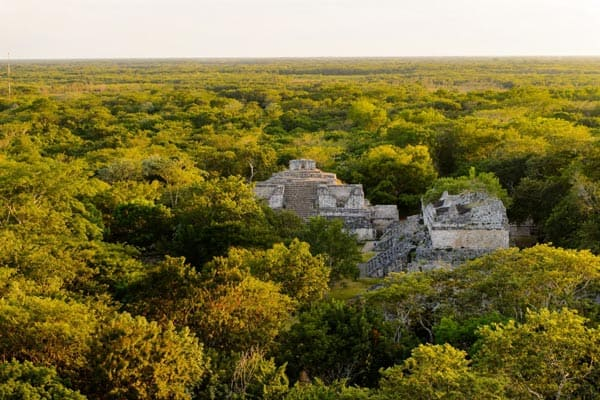 Mayan Kingdoms