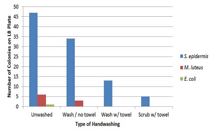 Effect of Handwashing on Bacterial Growth