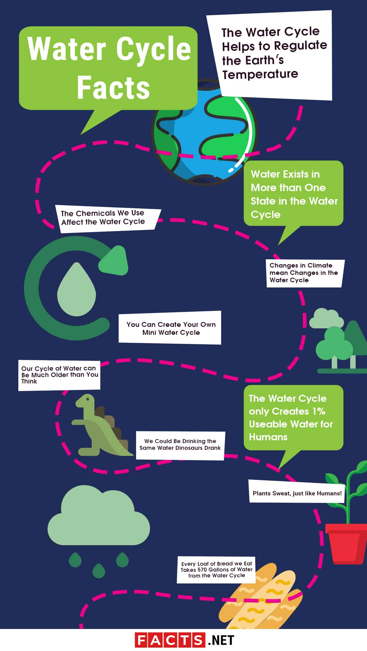 Water Cycle Facts Infographics
