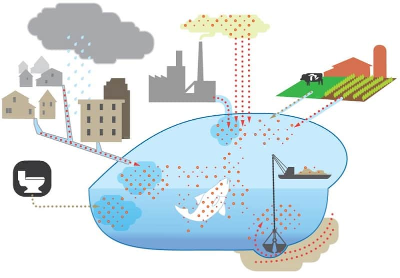 Where The Water Pollution Comes From