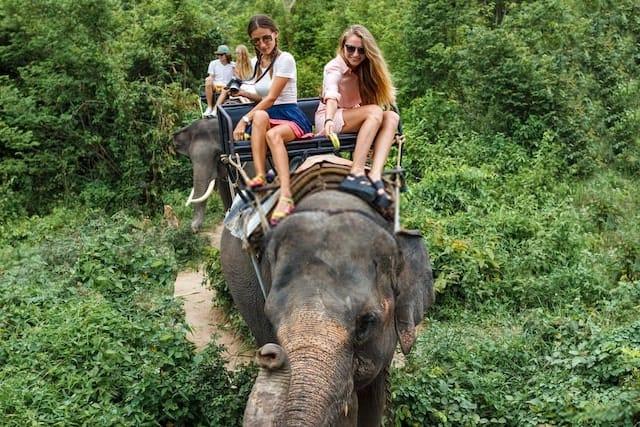 Tourists Riding on Elephants