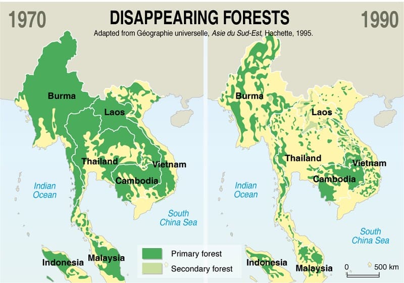 Thailand Forest is Disappearing