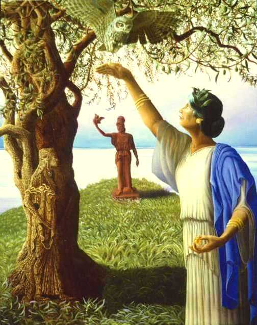 Goddes Athena and Olive Tree