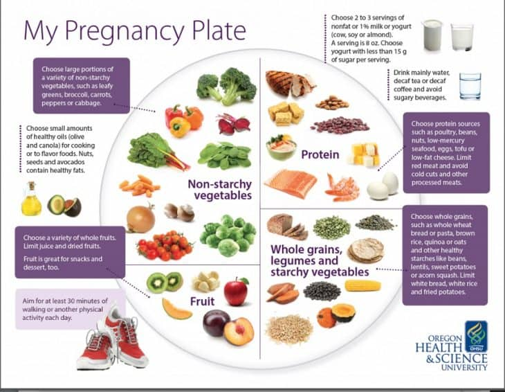 Pregnancy facts top 14 facts about pregnancy for Pregnancy fish chart