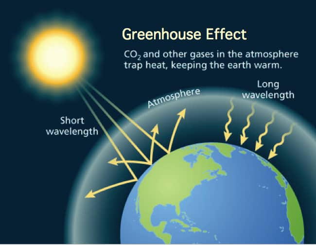 Essay On Greenhouse Effect And Global Warming | Mistyhamel