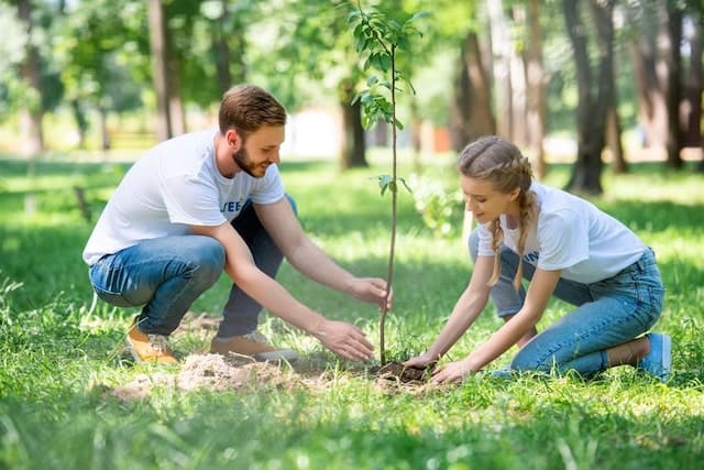 Young Couple Planting New Tree