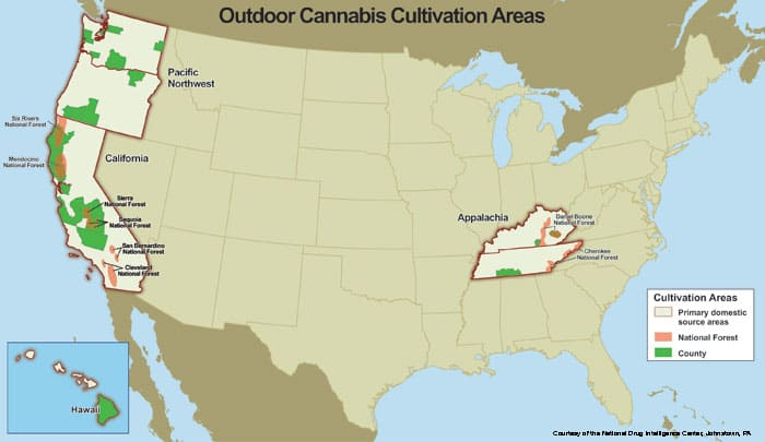 US-Outdoor-Cannabis-Cultivation-Areas