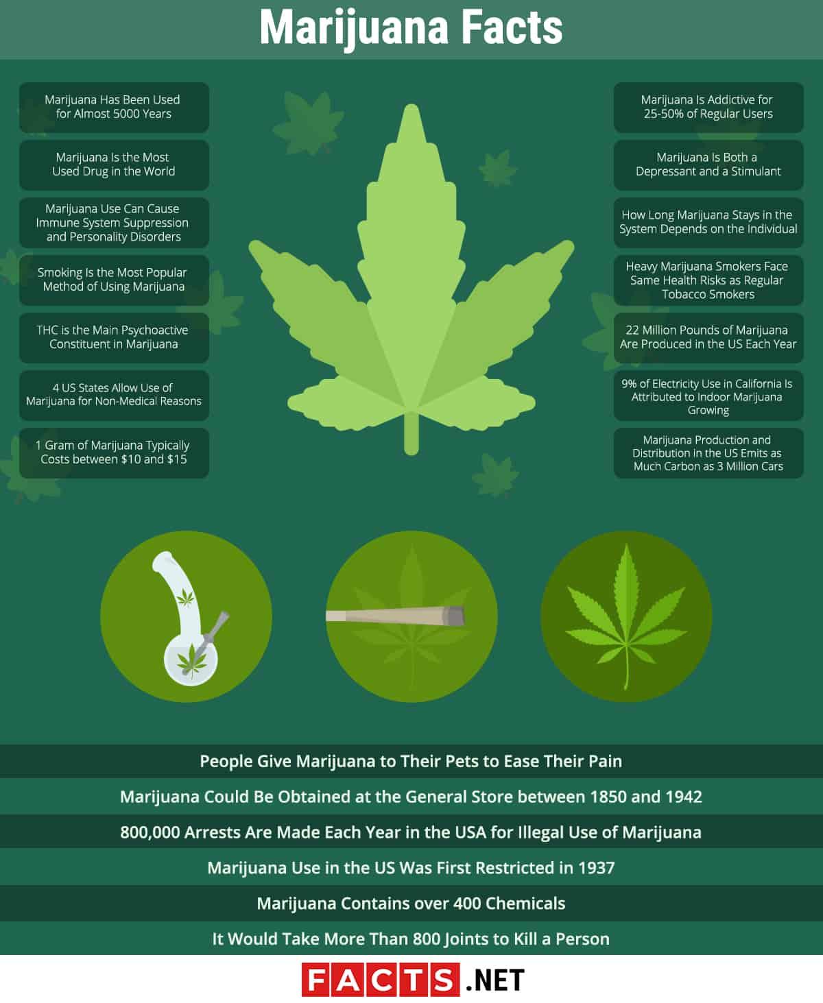 marijuana facts infographics