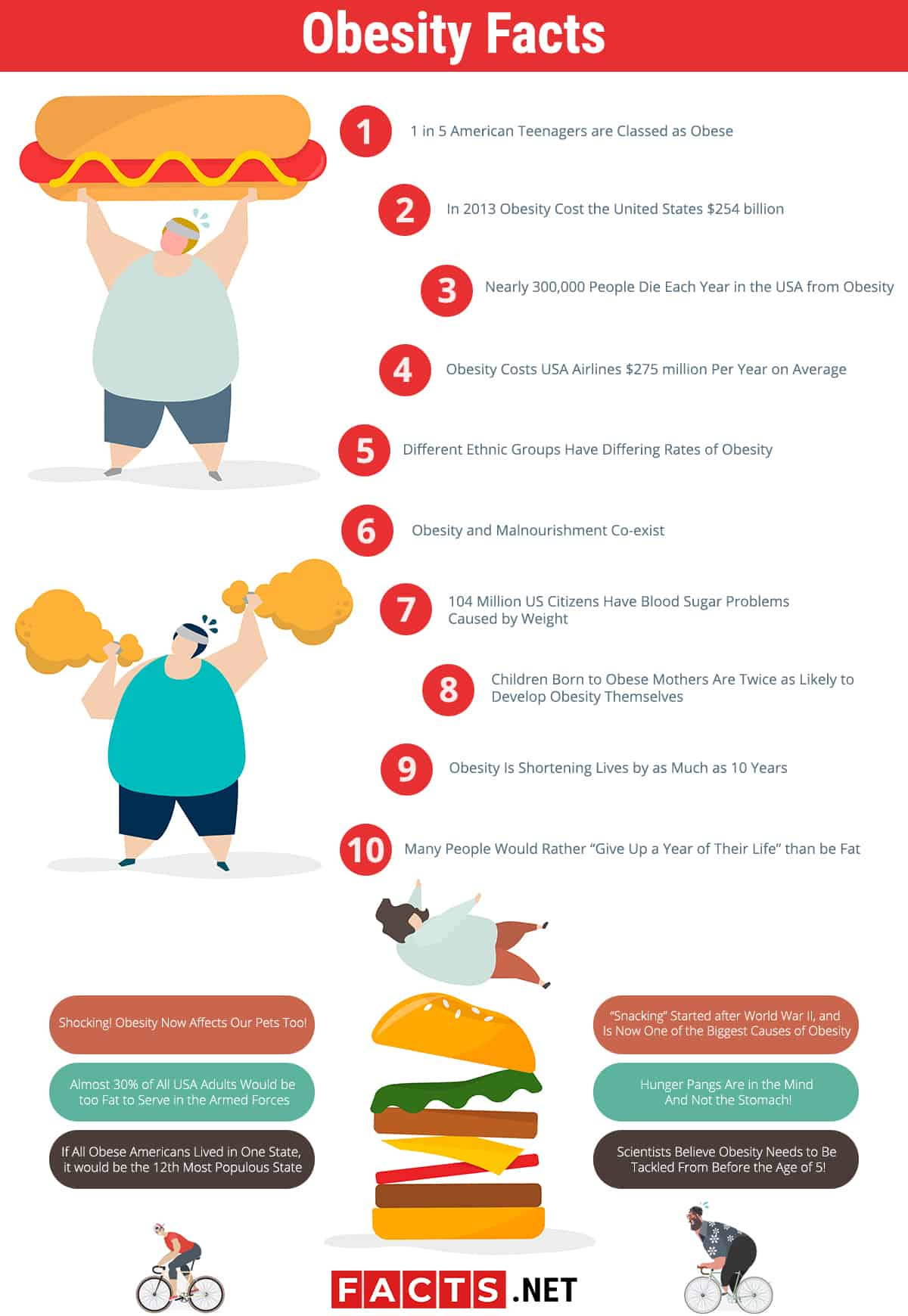 Obesity facts infographics