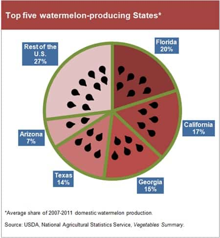 Top 5 Watermelon Producing States