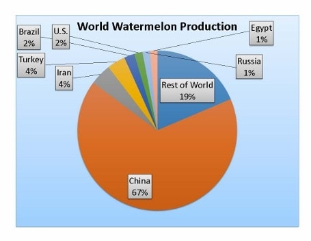 Top watermelon production countries
