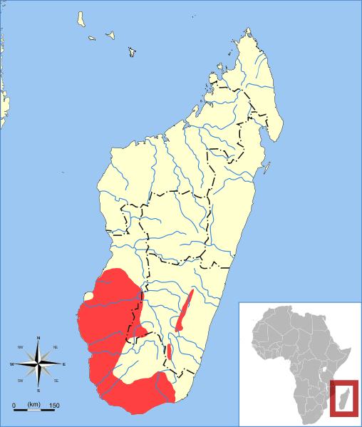 Lemur Range Map