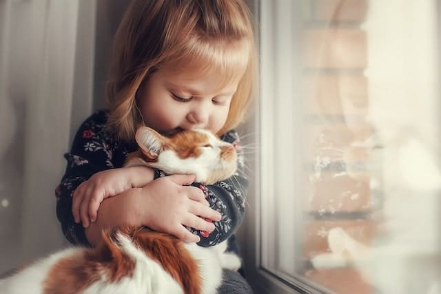 Animals Help Reduce Social Anxiety