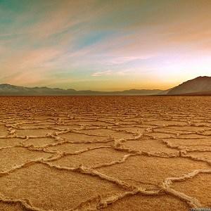 Desert Facts