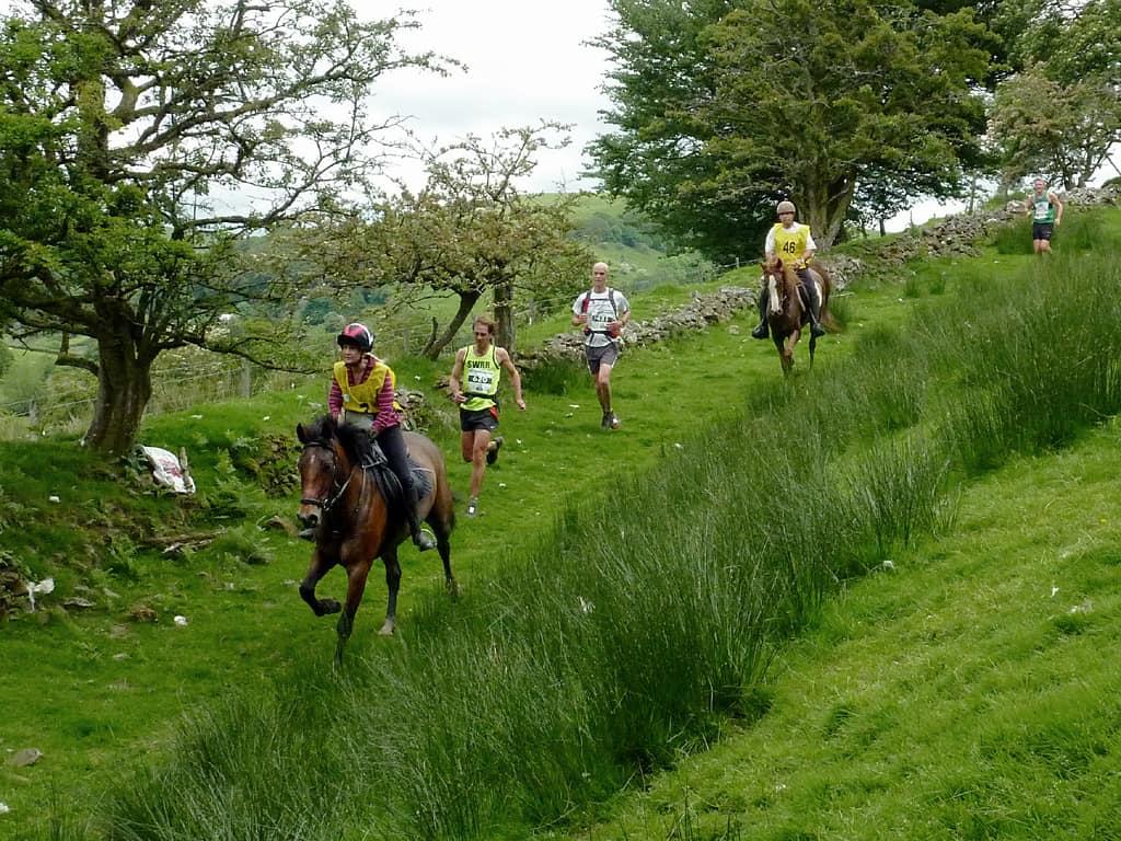 man vs horse marathon