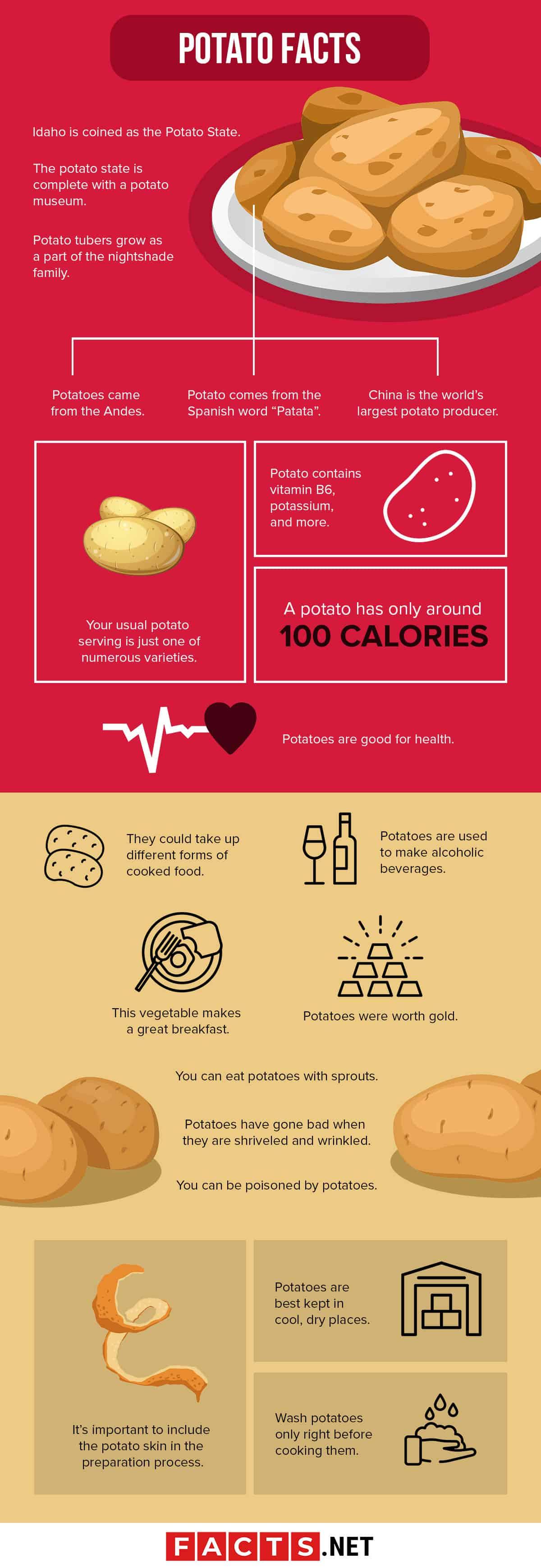 Potato Facts Infographics