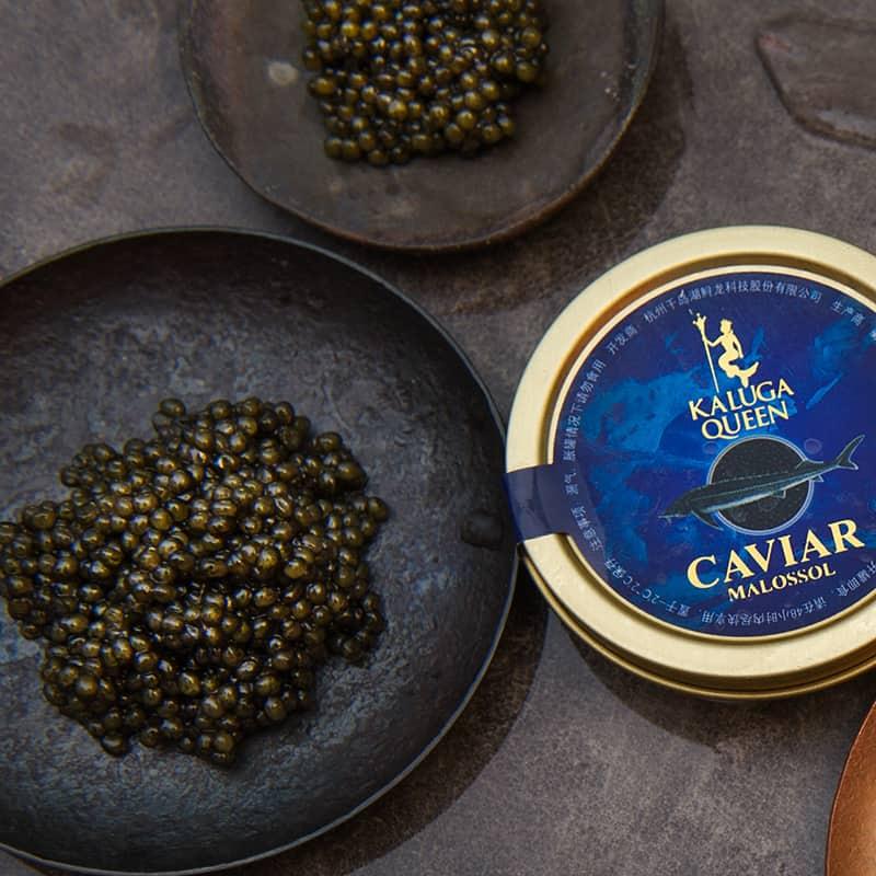 kaluga queen caviar