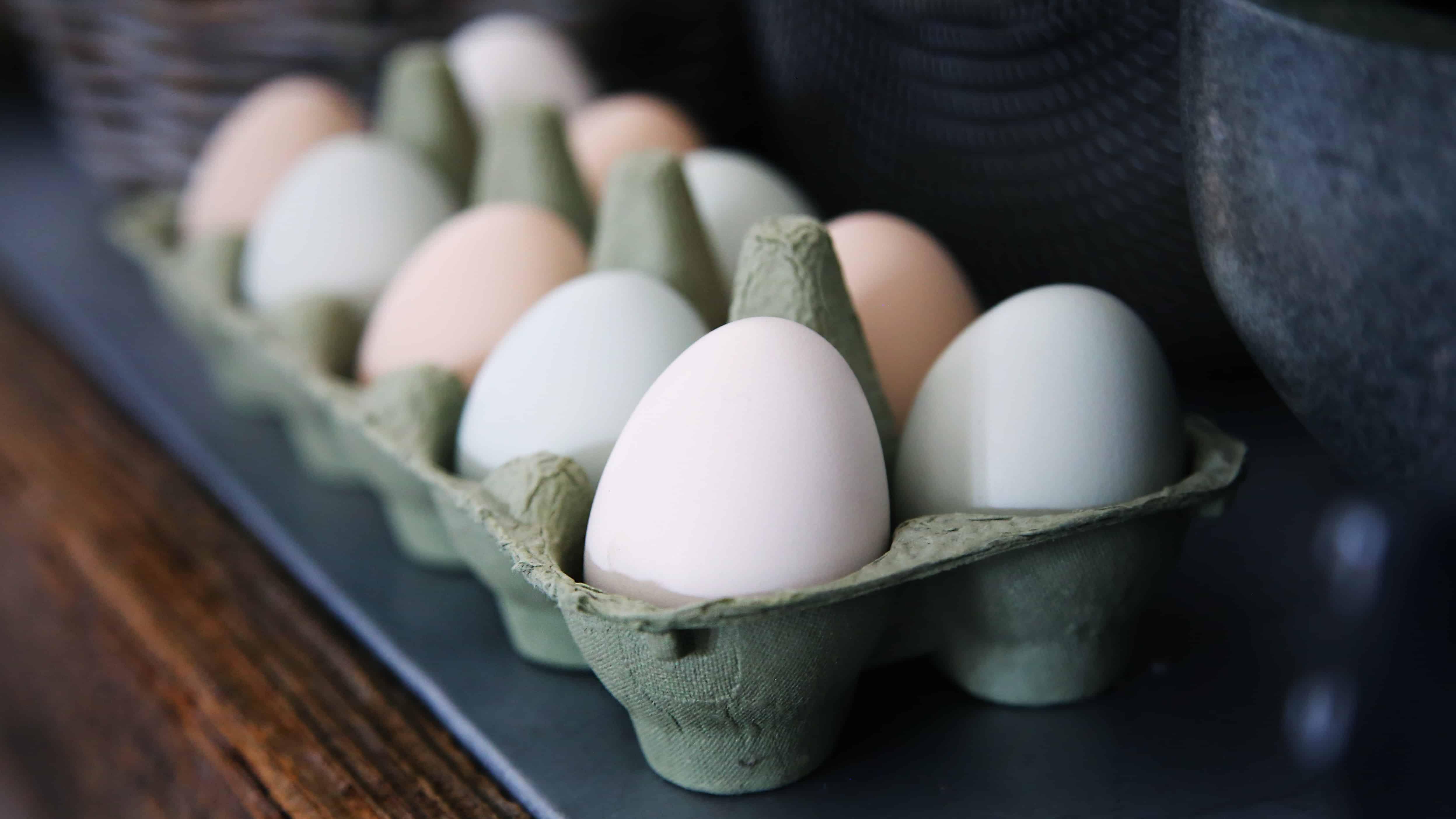 white eggs, eggs fact