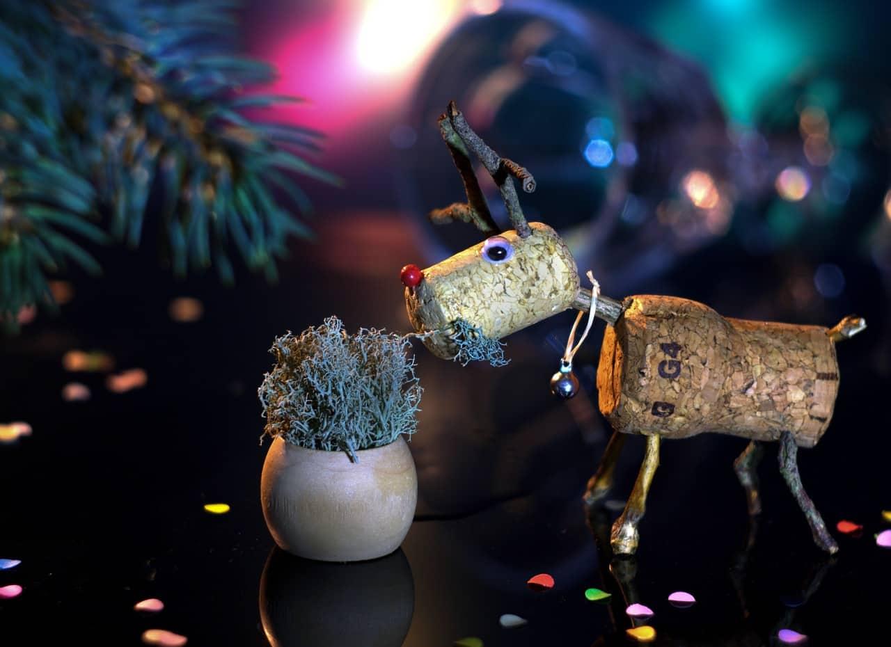 reindeer, christmas decor, christmas facts
