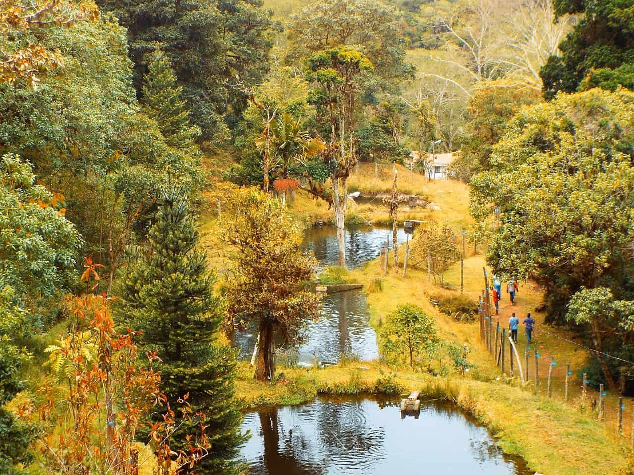 costa rica biodiversity, costa rica facts