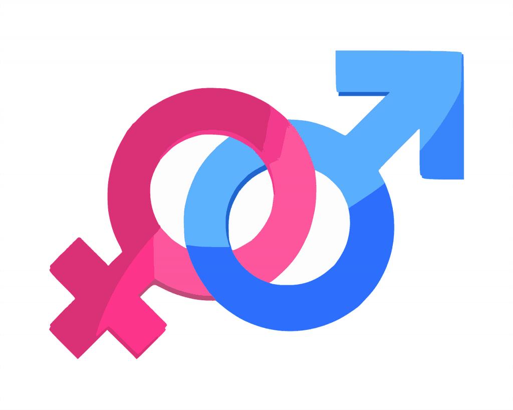 gender number facts
