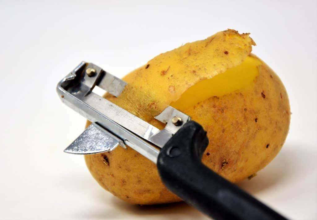 potato skin plant facts