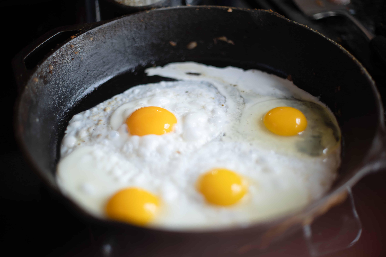 egg yolk, eggs facts