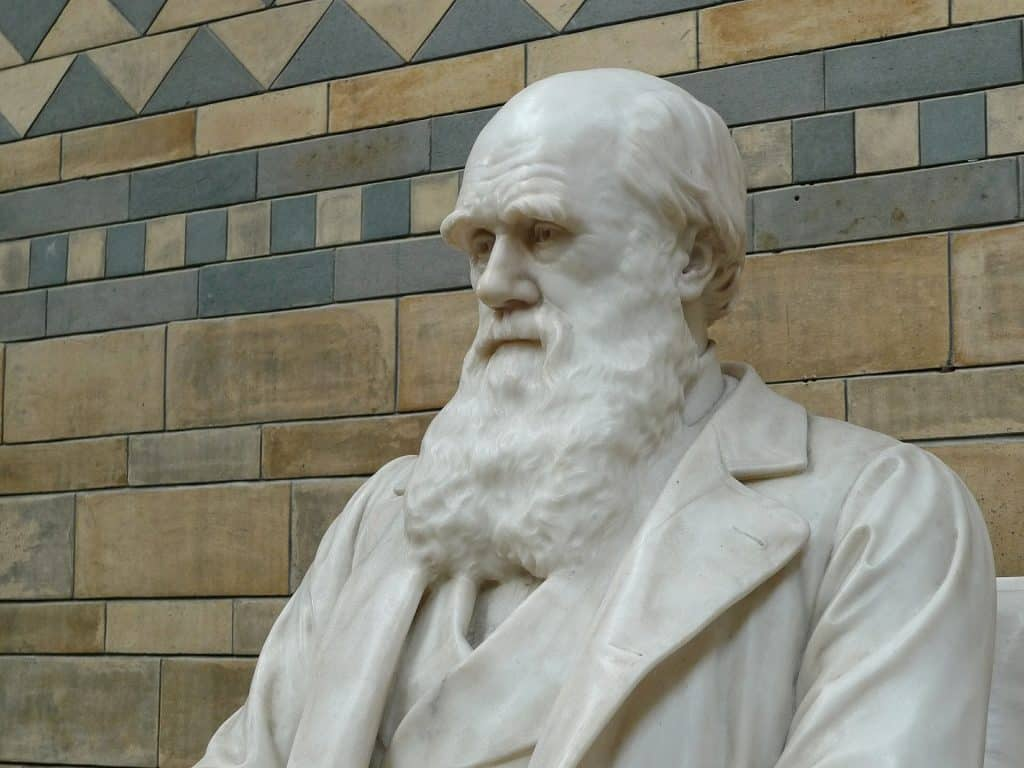 evolution of life charles darwin