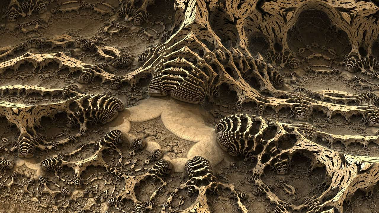 dinosaur fossil, science facts