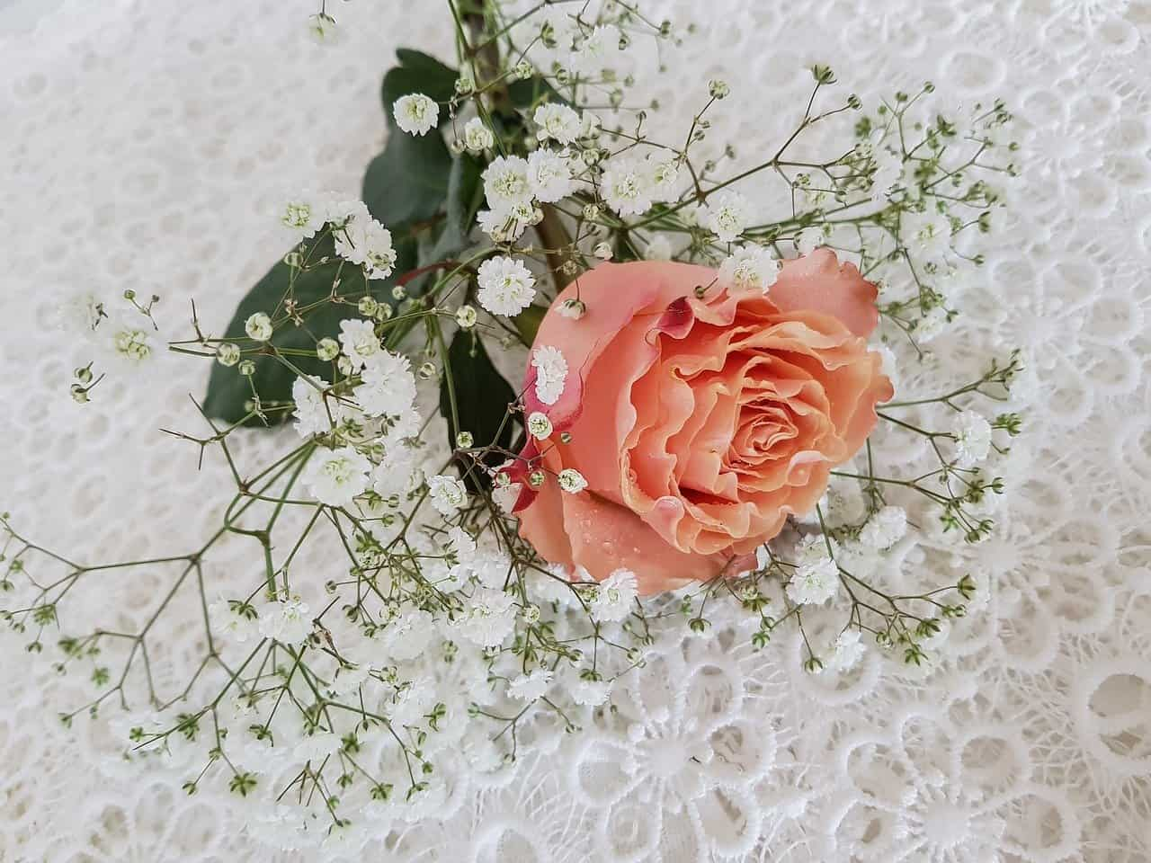 lace and flower for valentines, valentine's day facts