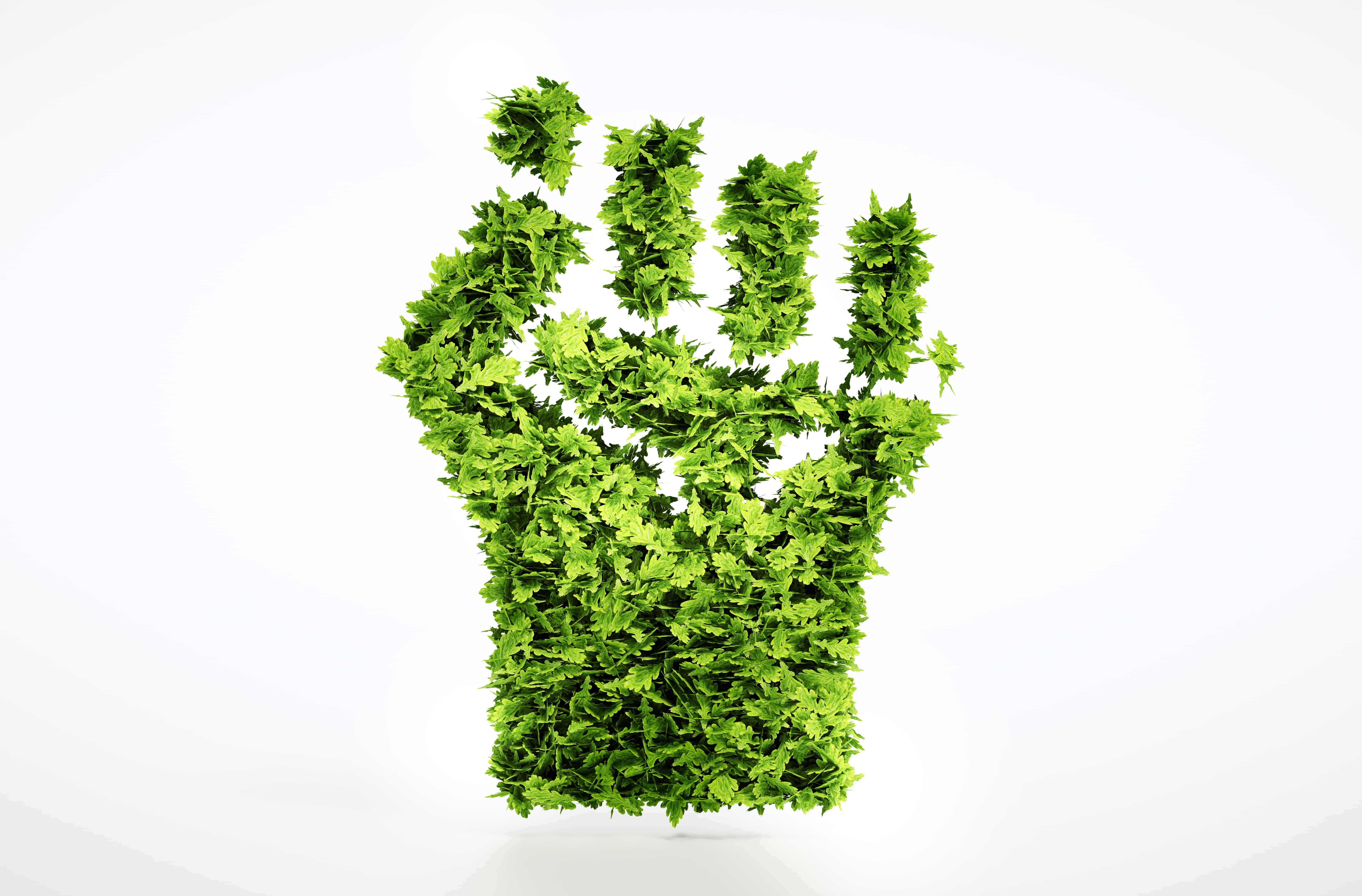 green revolution, technology facts