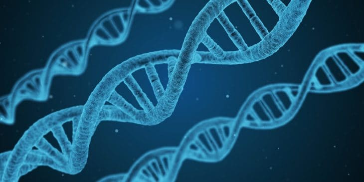An artist's impression of DNA, the building blocks of all life.