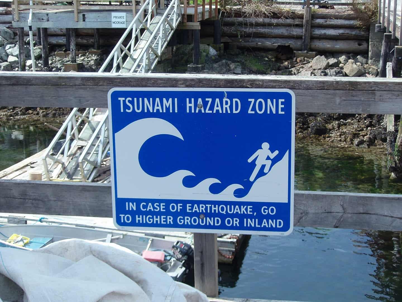 tsunami warning, earth facts