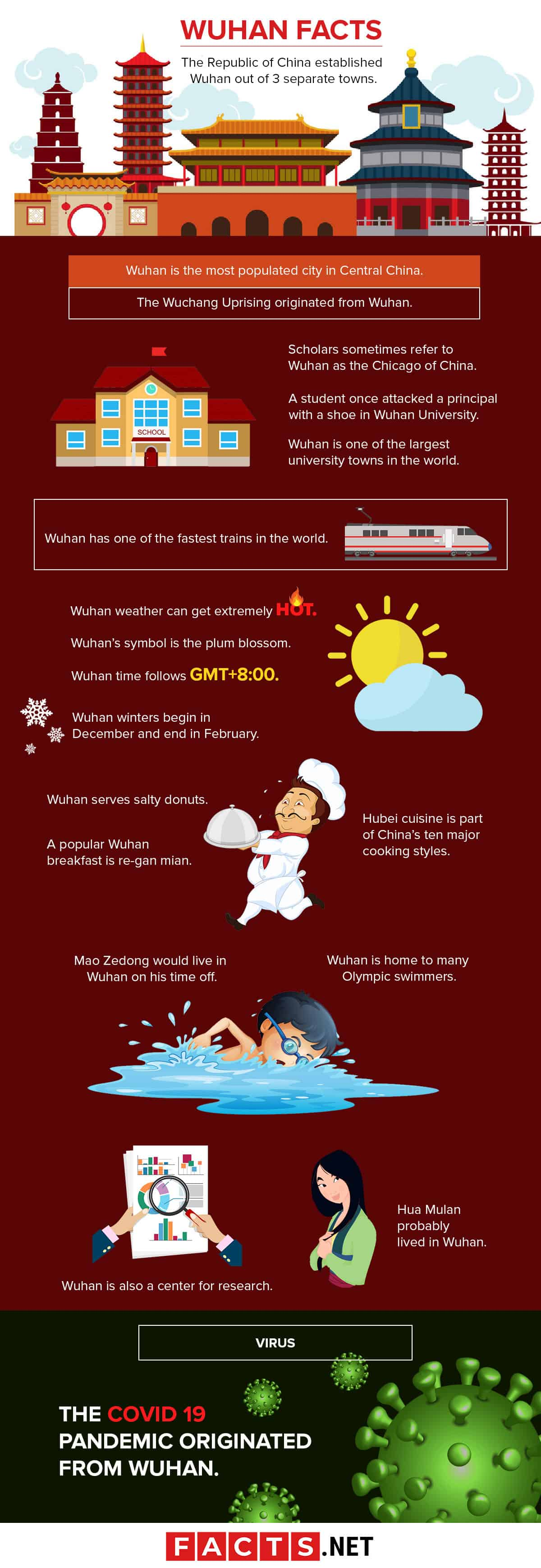 Wuhan Facts Infographics