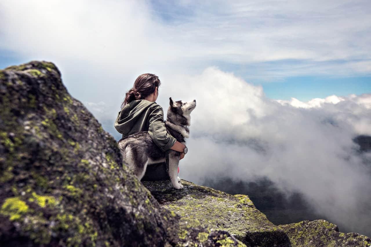 girl, clouds, mountain, husky, siberian husky facts