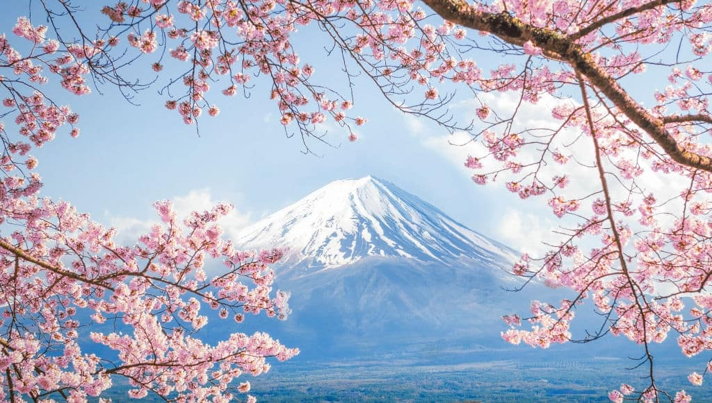 mount fuji facts, world facts